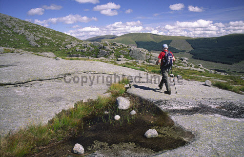 A hill walker walking on granite slab up to Snibe Hill with a view across to Corserine in the Galloway Forest Park, Dumfries and Galloway. PIC : ALLAN DEVLIN/SCOTTISH VIEWPOINT  Tel: +44 (0) 131 622 7174  Fax: +44 (0) 131 622 7175  E-Mail : info@scottishviewpoint.com  WEB : www.scottishviewpoint.com  This photograph cannot be used without prior permission from Scottish Viewpoint. hills,walk,walking,hillwalker,hillwalking,landscape,scotland,uk,rock,rocks,cloud,blue,sky,summer ALLAN DEVLIN/SCOTTISH VIEWPOINT