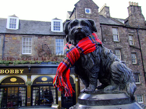 The statue of Greyfriars Bobby adorned with a tartan scarf in the city centre of Edinburgh.