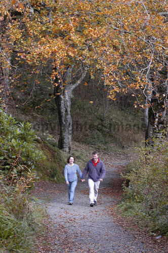A COUPLE TAKE AN AUTUMN WALK ALONG A PATH THROUGH THE WOODED GROUNDS OF LEWS CASTLE, STORNOWAY, THE ISLE OF LEWIS, OUTER HEBRIDES PIC: P.TOMKINS/VisitScotland/SCOTTISH VIEWPOINT Tel: +44 (0) 131 622 7174   Fax: +44 (0) 131 622 7175 E-Mail : info@scottishviewpoint.com This photograph cannot be used without prior permission from Scottish Viewpoint. ACTIVITY,WESTERN ISLES,WALKING,WALKERS,TREES,ROMANTIC,PATH,ISLAND,AUTUMN