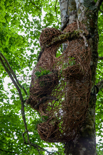 Tiroran Community Forest Opening, Isle of Mull 4/6/2016  Vision Mechanics created three super head sculptures at the event  Picture Credit Sam Jones/HIE Tiroran Community Forest Opening,2016,South West Mull and Iona Development,community,forest