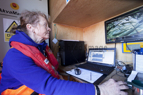 Loch Duart Salmon  Staff member with a computer  Picture Credit : Gary Doak 2016,Loch Duart,salmon,aquaculture,sutherland,badcall,fishing