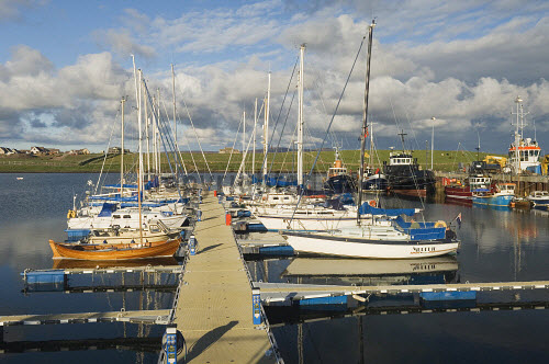 Yachts berthed in the marina at Stromness, Mainland, Orkney..Picture Credit : Iain Sarjeant 2012,activity,activities,sailing,boat,boats,yacht,yachts,island,isle,isles,masts,pontoon,reflection,summer,sunny,water,harbour,fishing,scenic