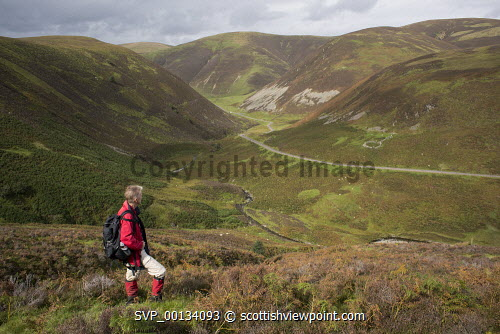 On the ancient path Dempster Road looking down and across the Mennock Pass tp Auchengruith Craig with Brown Hill, Wether Hill and White Dod behind, Scotland uk,u.k,Great Britain,GB,G.B,Scotland,Scottish,1 person,outdoors,walk,walking,walker,climb,climber,fresh,air,hill,hills,mountain,mountains,Lowther,rolling,heather,bracken,Mennock,Pass,Water,male,red,jacket,middle,aged,fit,fitness,health,healthy,Nithsdale,Dumfries,and,Galloway,ridge,autumn,autumnal,ancient,path,track,old,view,steep,Dempster