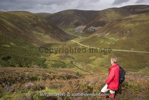 On the ancient path Dempster Road looking down and across the Mennock Pass tp Auchengruith Craig with Brown Hill, Wether Hill and White Dod behind, Scotland uk,u.k,Great Britain,GB,G.B,Scotland,Scottish,1 person,outdoors,walk,walking,walker,climb,climber,fresh,air,hill,hills,mountain,mountains,Lowther,rolling,heather,bracken,Mennock,Pass,Water,male,red,jacket,middle,aged,fit,fitness,health,healthy,Nithsdale,Dumfries,and,Galloway,ridge,misty,autumn,autumnal,ancient,path,track,old,view,steep,Dempster,Road
