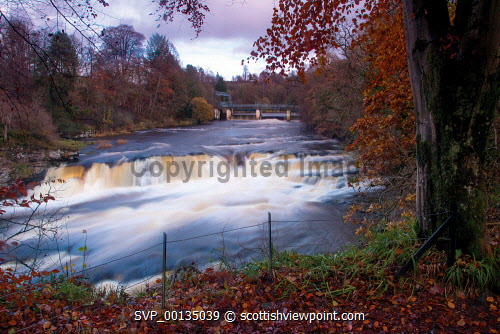 Bonnington Linn and the River Clyde, Falls of Clyde near New Lanark, South Lanarkshire u.k,Great Britain,GB,G.B,Scotland,Scottish,nobody,outdoors,South Lanarkshire,Corra Linn,Waterfall,River Clyde,New Lanark,Clyde Walkway,Autumn,Colours,Woodland,Historic,Historical,UNESCO World Heritage Site,fast,water