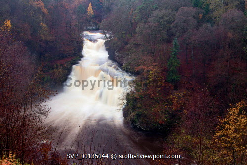 The dramatic 27 metre high Corra Linn and the River Clyde, New Lanark, South Lanarkshire u.k,Great Britain,GB,G.B,Scotland,Scottish,nobody,outdoors,South Lanarkshire,Corra Linn,Waterfall,River Clyde,New Lanark,Clyde Walkway,Autumn,Colours,Woodland,Viewpoint,Visitor Attraction,Historic,Historical,UNESCO World Heritage Site,fast,water