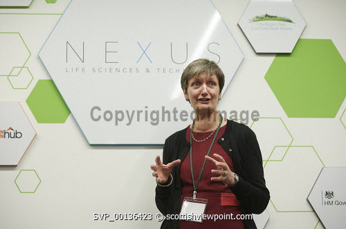 Nexus Launch, Solasta House. Inverness CampusCarroll Buxton HIE speaking at the eventPicture Credit Ewen Weatherspoon /HIE7/06/2019 2019,NEXUS,LAUNCH,people,chatting,chat,interact,interaction,mingle,mingling,networking,business,breakfast,opening