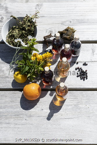 Badachro Gin , Wester Ross  Pictured flavourings in bottles and other flavourings Picture Credit John Paul/HIE 2019,gin,distillery,distilleries,production,artisan,drink,badachro,distillers,process,alchohol,bottle,bottles,oranges,lemons,botanicals,botanical John Paul