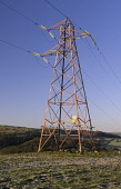 Electricity pylons criss crossing the Scottish countryside bring power to towns and cities across Scotland UK PIC: ALLAN DEVLIN/SCOTTISH VIEWPOINT Tel: +44 (0) 131 622 7174   Fax: +44 (0) 131 622 7175... ALLAN DEVLIN/SCOTTISH VIEWPOINT electric,electricity,electrically,electrical,electrify,electrified,electrocute,pylon,pylons,wire,wires,hazard,magnetic,field,fields,power,line,lines,powerline,powerlines,overhead,high,tension,cables,v