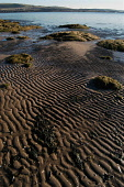 mudflats,nigg bay,cromarty firth,scotland  PIC: MARK HICKEN/SCOTTISH VIEWPOINT Tel: +44 (0) 131 622 7174   Fax: +44 (0) 131 622 7175 E-Mail : info@scottishviewpoint.com This photograph cannot be used... MARK HICKEN/SCOTTISHVIEWPOINT beach,texture,textures,pattern,patterns