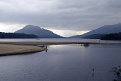 Anglers fishing from lochside sand bank, Loch Laggan, Glen Spean, Highland. PIC: DOUG HOUGHTON/SCOTTISH VIEWPOINT  Tel: +44 (0) 131 622 7174  Fax: +44 (0) 131 622 7175  E-Mail : info@scottishviewpoint... DOUG HOUGHTON/SCOTTISH VIEWPOINT isolated,isolation,peaceful,peace,quiet,tranquil,serene,clear,clean,lake,remote,serenity,unspoilt,countryside,country,side,life,countrylife,outdoors,hillside,hill,slope,valley,scenic,scene,tourist,att