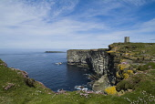 The Kitchener Memorial within the RSPB Nature reserve at Marwick Head, Mainland, Orkney. PIC: DOUG HOUGHTON/SCOTTISH VIEWPOINT  Tel: +44 (0) 131 622 7174  Fax: +44 (0) 131 622 7175  E-Mail : info@scot... DOUG HOUGHTON/SCOTTISH VIEWPOINT rspb,snh,royal,society,protection,birds,natural,heritage,bird,sanctuary,conservation,nature,ecotourism,ecotourist,environment,environmental,eco,system,ecosystem,ecosystems,ecology,ecological,flower,wi