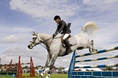 Equestrian sport horse riders show jumping competition horse jumping over jumps at Dumfries Agricultural Show Scotland UK PIC : ALLAN DEVLIN/SCOTTISH VIEWPOINT  Tel: +44 (0) 131 622 7174  Fax: +44 (0)... horse,horses,equestrian,sport,sports,competition,jumps,jump,show-jump,show-jumping,show,jumping,saddle,hoofs,strain,straining,protective,clothing,hat,hard,hats,compete,ride,riders,riding,dress,legs,ev