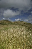 Monument to engineer 'Hotblast' Neilson atop an Iron Age hillfort near Ringford in Galloway PIC : PHIL MCMENEMY/SCOTTISH VIEWPOINT  Tel: +44 (0) 131 622 7174  Fax: +44 (0) 131 622 7175  E-Mail : info@... Scotland,Galloway,dumfries,dumfries and galloway,remote,holiday,tourism,outdoors,nature,beauty,iron and steel production,iron age,hillfort,iron age hillfort