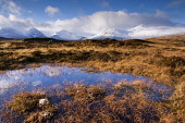View from the edge of Lochan na h-Achlaise toward Black Mount. Rannoch Moor, Highlands, Scotland. Photographed in December. PIC: LEE BEEL/SCOTTISH VIEWPOINT Tel: +44 (0) 131 622 7174   Fax: +44 (0) 13... LEE BEEL/SCOTTISH VIEWPOINT beel,achlaise,beautiful,beauty,black,britain,british,calm,capped,clear,climb,climbing,coe,cold,country,countryside,covered,crisp,day,december,edge,empty,extreme,fresh,frosted,froze,frozen,great,glen,h