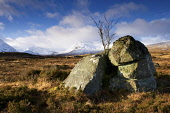 View toward Black Mount. Rannoch Moor, Highlands, Scotland. Photographed in December. PIC: LEE BEEL/SCOTTISH VIEWPOINT Tel: +44 (0) 131 622 7174   Fax: +44 (0) 131 622 7175 E-Mail : info@scottishviewp... LEE BEEL/SCOTTISH VIEWPOINT achlaise,beautiful,beauty,black,britain,british,calm,capped,clear,climb,climbing,coe,cold,country,countryside,covered,crisp,day,december,edge,empty,extreme,fresh,frosted,froze,frozen,great,glen,h-achl