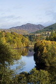 LOCH FASKALLY PERTHSHIRE Autumn trees mountain glen PIC: DOUG HOUGHTON/SCOTTISH VIEWPOINT Tel: +44 (0) 131 622 7174   Fax: +44 (0) 131 622 7175 E-Mail : info@scottishviewpoint.com This photograph cann... D HOUGHTON/SCOTTISHVIEWPOINT perthshire,pitlochry,loch,faskally,tummel,valley,scotland,scottish,lakeside,lochside,fresh,water,lake,trees,forest,forestry,woodlands,timberland,season,autumnal,autumntime,fall,brown,golden,orange,yel