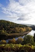 LOCH FASKALLY PERTHSHIRE Autumn trees glen PIC: DOUG HOUGHTON/SCOTTISH VIEWPOINT Tel: +44 (0) 131 622 7174   Fax: +44 (0) 131 622 7175 E-Mail : info@scottishviewpoint.com This photograph cannot be use... D HOUGHTON/SCOTTISHVIEWPOINT perthshire,pitlochry,loch,faskally,tummel,valley,scotland,scottish,lakeside,lochside,fresh,water,lake,trees,forest,forestry,woodlands,timberland,season,autumnal,autumntime,fall,brown,golden,orange,yel