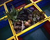 A BASKET OF ORGANIC VEGETABLES PIC: GARY DOAK/SCOTTISH VIEWPOINT PUBLIC food,fresh,produce,healthy,eating