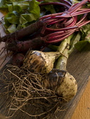 SPRING ONIONS AND BEETROOT. PIC: DOUGLAS JONES/SCOTTISH VIEWPOINT  Tel: +44 (0) 131 622 7174  Fax: +44 (0) 131 622 7175  E-Mail: info@scottishviewpoint.com  Web: www.scottishviewpoint.com  This photog... DOUGLAS JONES/SCOTTISH VIEWPOINT FOOD,EATING,PRODUCE,PREPARATION,COOKING,VEGETABLES