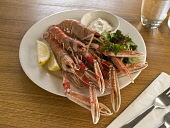 A SERVING OF LANGOUSTINES. PIC: DOUGLAS JONES/SCOTTISH VIEWPOINT  Tel: +44 (0) 131 622 7174  Fax: +44 (0) 131 622 7175  E-Mail: info@scottishviewpoint.com  Web: www.scottishviewpoint.com  This photogr... DOUGLAS JONES/SCOTTISH VIEWPOINT FOOD,EATING,RESTAURANT,DINING,PLATE,SHELLFISH