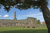 St Andrews, Cathedral ruins, Fife,  Scotland, August,  2008 PIC: D BARNES/SCOTTISH VIEWPOINT  Tel: +44 (0) 131 622 7174  Fax: +44 (0) 131 622 7175  E-Mail : info@scottishviewpoint.com  This photograph... Public, NMR St Andrews,Cathedral,ruins,church,christian,monument,saint,coast,University,Golf,Tranquil,Scottish,landscape,famed,renowned,tradition,famous,UK,United Kingdom,Travel,heritage,tourist,Attraction,Touris