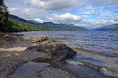 Looking north from Firkin Point, Inverbeg on the west bank of Loch Lomond, Argyll, Scotland,  August,  2008  PIC: D BARNES/SCOTTISH VIEWPOINT  Tel: +44 (0) 131 622 7174  Fax: +44 (0) 131 622 7175  E-M... Public, NMR Loch,Lomond,Firkin,Point,Inverbeg,sunny,west,bank,Trossachs,National,Park,Argyll,Bute,Tranquil,Scottish,landscape,famed,renowned,tradition,famous,mountain,Munroe,UK,United Kingdom,Travel,heritage,tour