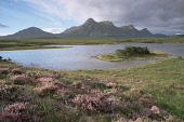 BEN LOYAL - (GAELIC : BEINN LAOGHAL) A MOUNTAIN IN THE SUTHERLAND DISTRICT FROM LOCHAN HAKEL, HIGHLAND. IAIN SARJEANT/SCOTTISHVIEWPOINT Tel: +44 (0) 131 622 7174  Fax: +44 (0) 131 622 7175  E-Mail : i... Public, NMR HIGHLANDS,SUNNY,SUMMER,WATER,HEATHER,MOUNTAINS