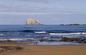 Bass Rock NORTH BERWICK LOTHIAN Sandy beach and craggy bird sanctuary island rock Firth of Forth  Pic: Doug Houghton / Scottish Viewpoint Tel: +44 (0) 131 622 7174 Fax: +44 (0) 131 622 7175 E-Mail: in... Public lothian,north,berwick,bass,rock,scotland,scottish,mouth,crag,sea,lighthouse,lauder,family,covenanters,wildlife,seabirds,gannet,colony,geology,sand,beaches,bay,water,tide,coastal,coastline,seashore,sho