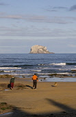 Bass Rock NORTH BERWICK LOTHIAN Couple and dog on sandy beach and craggy bird sanctuary island rock  Pic: Doug Houghton / Scottish Viewpoint Tel: +44 (0) 131 622 7174 Fax: +44 (0) 131 622 7175 E-Mail:... Public lothian,north,berwick,bass,rock,couple,dog,beach,scotland,scottish,people,man,woman,pet,mouth,crag,sea,lighthouse,lauder,family,covenanters,wildlife,seabirds,gannet,colony,geology,sand,beaches,bay,wat