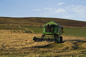 HARVESTING FARMING John Deer Combine harvester cutting barley Orphir Orkney  Pic: Doug Houghton / Scottish Viewpoint Tel: +44 (0) 131 622 7174 Fax: +44 (0) 131 622 7175 E-Mail: info@scottishviewpoint.... Public farming,john,deer,combine,harvester,barley,cutting,scotland,scottish,machine,machinery,mechanised,mechanized,motorised,gathering,reap,agriculture,harvesting,agronomy,farmland,field,farm,land,outdoors,