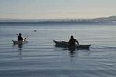 Two women canoeists paddling boat out to sea on Fife coast Kayak WATERSPORT SPORT  Pic: Doug Houghton / Scottish Viewpoint Tel: +44 (0) 131 622 7174 Fax: +44 (0) 131 622 7175 E-Mail: info@scottishview... Public sport,watersport,kayak,canoeists,women,canoeing,paddlers,kayakers,canoe,canoes,kaiak,kyak,kyack,canoeist,paddler,kayaker,kayaks,kaiaks,kyaks,kyacks,kayaking,kaiaking,kyaking,kyacking,paddle,paddling,p
