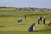 Golfer on putting green Earlsferrys golf course Earlsferry links EARLSFERRY FIFE  Pic: Doug Houghton / Scottish Viewpoint Tel: +44 (0) 131 622 7174 Fax: +44 (0) 131 622 7175 E-Mail: info@scottishviewp... Public fife,earlsferry,links,fifeshire,shire,kingdom,east,neuk,coast,scotland,scottish,green,putting,greens,golf,hole,course,courses,flag,person,golfer,sportsman,putter,holidaymakers,holiday,makers,visitors,