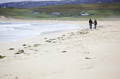 A young couple walk hand in hand down Scarista beach, Isle of Harris.  Pic: Marcus McAdam / Scottish Viewpoint Tel: 0044 (0) 131 622 7174 Fax:0044 (0) 131 622 7175 E-Mail: info@scottishviewpoint.com W... Public, NMR Beach,Coast,Couple,Harris,Lovers,Outer Hebrides.,Sand,Scarista,Scenic,Shore,Tourists,Walking,Waves,Western Isles