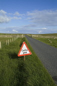 ESHA NESS SHETLAND Country road cattle grid and cattle grid signpost  Pic: Doug Houghton / Scottish Viewpoint Tel: 0044 (0) 131 622 7174 Fax: 0044 (0) 131 622 7175 E-Mail: info@scottishviewpoint.com W... Public, NMR shetland,country,road,cattle,grid,signpost,warning,scotland,scottish,cows,animals,farming,agricultural,agriculture,countryside,outside,outdoors,agronomy,life,industry,farm,land,farmland,travel,high,wa