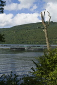 Loch Tay LOCH TAY PERTHSHIRE Loch Tay fishfarm cages  Pic: Doug Houghton / Scottish Viewpoint Tel: 0044 (0) 131 622 7174 Fax: 0044 (0) 131 622 7175 E-Mail: info@scottishviewpoint.com Web: www.scottish... Public, NMR loch,tay,fishfarm,perthshire,fishfarming,cages,net,aquaculture,cage,aquacultural,farming,fish,farms,fishfarms,nets,business,fishery,industry,netting,glen,valley,countryside,glens,country,valleys,scotl
