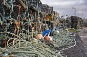Lobster creels on the quayside at Johnshaven, Aberdeenshire. Set on the picturesque coastal plains of the Mearns around 7 miles north of Montrose just off the A92, the charming fishing village of John... Public, NMR Johnshaven,harbour,port,haven,village,town,coast,coastal,resort,plains,northeast,scotland,aberdeenshire,mearns,fish,festival,charming,montrose,seaside,north,seas,outdoors,landscape,travel,tourist,tour