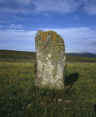 This ancient stone  photographed in mid summer is 1.86m high and is thought to be part of an old stone circle because several other stones were found around it. It is encrusted with lichen which is an... Public standing
