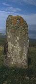 Borvemore (Buirgh Mh�r) STANDING STONE   This ancient stone  is 1.86m high and is thought to be part of a stone circle, because several other stones were found around it. It is encrusted with lichen w... Public island,isle,history