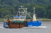 Scallop fishing boat returning to harbour at Kirkcudbright, Dumfries and Galloway. Picture Credit : Keith Kirk / Scottish Viewpoint Tel: +44 (0) 131 622 7174 Fax: +44 (0) 131 622 7175 E-Mail: info@sco... Public SUMMER,INDUSTRY,WATER,SEAFOOD