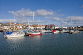 Boats & yachts Anstruther Harbour Fife Scotland  Picture Credit: D. G. Farquhar / Scottish Viewpoint Tel: +44 (0) 131 622 7174 Fax: +44 (0) 131 622 7175 E-Mail: info@scottishviewpoint.com Web: www.sco... Public Sailing,Scotland,Boat,Boats,East Neuk,Harbor,Harbors,Harbour,Harbours,Kingdom of Fife,Marina,Marinas,Port,Ports,Sail Boat,Sail Boats,Sailboat,Sailboats,Sailing Boat,Sailing Boats,Transport,Transportat