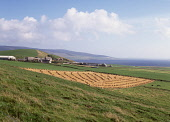 EVIE ORKNEY Farmhouse stacked harvested hayfield rural farming Rousay island  Picture Credit: Doug Houghton / Scottish Viewpoint Tel: +44 (0) 131 622 7174   Fax: +44 (0) 131 622 7175 E-Mail : info@sco... Public orkney,evie,stacked,harvest,hayfield,rural,farm,scotland,scottish,farmland,field,land,pasture,lea,arable,grass,agricultural,industry,agronomy,growing,cultivation,cultivating,countryside,country,side,c