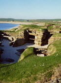Bay of Skaill SKARA BRAE ORKNEY Prehistoric neolithic village settlement stone house room ruins  Picture Credit: Doug Houghton / Scottish Viewpoint Tel: +44 (0) 131 622 7174   Fax: +44 (0) 131 622 717... Public orkney,skara,brae,bay,of,skaill,neolithic,village,scotland,scottish,megalithic,bronze,age,small,community,masonry,stonework,stone,work,drystone,dry,building,house,homestead,traditional,buildings,inhab