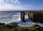 Yesnaby Castle YESNABY ORKNEY White foaming waves sea stack and seacliffs  Picture Credit: Doug Houghton / Scottish Viewpoint Tel: +44 (0) 131 622 7174   Fax: +44 (0) 131 622 7175 E-Mail : info@scotti... Public orkney,yesnaby,tourist,attraction,sea,stack,cliffs,scotland,scottish,seastack,rock,rocks,outcrop,seacliff,seacliffs,cliff,clifftop,top,ledge,edge,sheer,rugged,seacoast,coast,coastal,coastline,line,sho