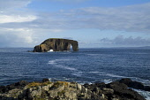 Dore Holm ESHA NESS SHETLAND Natural arch rock unihabitated islet  and rocky coast shore  Picture Credit: Doug Houghton / Scottish Viewpoint Tel: +44 (0) 131 622 7174   Fax: +44 (0) 131 622 7175 E-Mai... Public shetland,esha,ness,dore,holm,scotland,scottish,coastline,sea,cliffs,seacliffs,sheer,line,coast,coastal,crags,littoral,stone,rocky,land,outside,outdoors,country,countryside,open,remote,islet,quiet,tran
