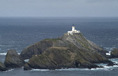 Herma Ness UNST SHETLAND Muckle Flugga lighthouse Britains and Shetlands most northerly rocky island  Picture Credit: Doug Houghton / Scottish Viewpoint Tel: +44 (0) 131 622 7174   Fax: +44 (0) 131 62... Public shetland,unst,herma,ness,muckle,flugga,lighthouse,scotland,scottish,northern,light,house,board,nlhb,whitewash,whitewashed,washed,shipwreck,shipwrecking,shipping,warning,warn,naval,nautical,navigation,