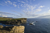 Brough of Bigging YESNABY ORKNEY West coast seacliff evening  Picture Credit: Doug Houghton / Scottish Viewpoint Tel: +44 (0) 131 622 7174   Fax: +44 (0) 131 622 7175 E-Mail : info@scottishviewpoint.c... Public orkney,yesnaby,brough,bigging,seacliffs,skyscape,cliffs,clifftops,tops,seacliff,sea,cliff,top,clifftop,ledge,edge,sheer,rugged,coast,line,shore,seashore,shoreline,littoral,coastline,coastal,seacoast,s