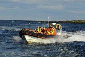 The Fast Rib boat trip heading back to Anstruther after a visit to the Isle of May, East Neuk of Fife. Picture Credit: Chris Robson / Scottish Viewpoint Tel: +44 (0) 131 622 7174 Fax: +44 (0) 131 622... Public 2010,summer,bird watching,boat,water,coast,coastal,firth of forth,sunny,people,rigid,inflatable,fast-boat,fast,charter