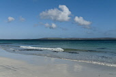 Egilsay sandy beach island of Eday in distance  EGILSAY ORKNEY  Picture Credit: D. Houghton / Scottish Viewpoint Tel: +44 (0) 131 622 7174   Fax: +44 (0) 131 622 7175 E-Mail : info@scottishviewpoint.c... Public orkney,egilsay,remote,nobody,sandy,beach,uk,isles,orkneys,island,eday,distance,holidaymaker,rocky,one,seacoast,beaches,faraway,nopeople,scottish,islands,northern,scotland,rocks,stones,bolders,seaside,