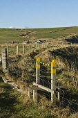 Footpath stile on seacliff foot path  SOUTH RONALDSAY ORKNEY  Picture Credit: D. Houghton / Scottish Viewpoint Tel: +44 (0) 131 622 7174   Fax: +44 (0) 131 622 7175 E-Mail : info@scottishviewpoint.com... Public scotland,footpath,stile,uk,cliff,foot,path,orkney,on,seacliff,south,ronaldsay,stiles,coastal,footpaths,walking,paths,track,walk,trails,pathway,trail,pathways,tracks,right,way,freedom,roam,sea,top,clif